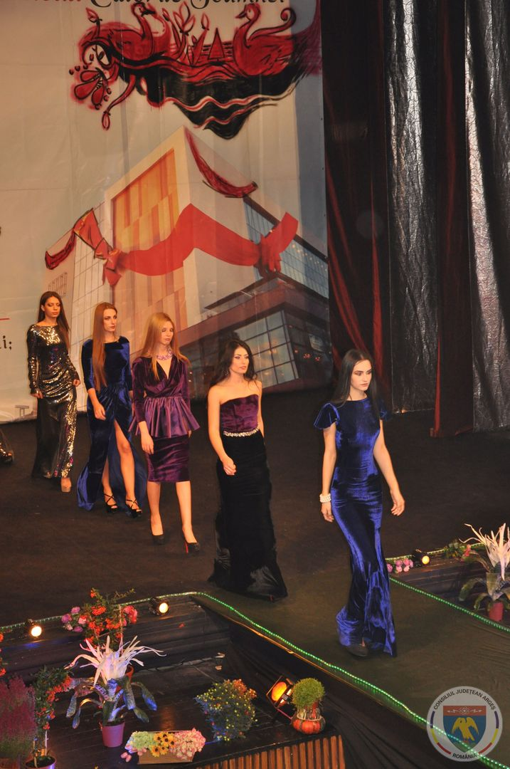 Festivalul Culorile Toamnei (11).jpg