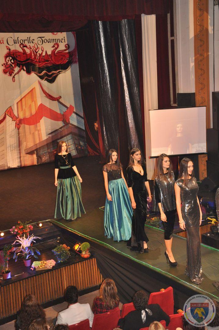 Festivalul Culorile Toamnei (12).jpg
